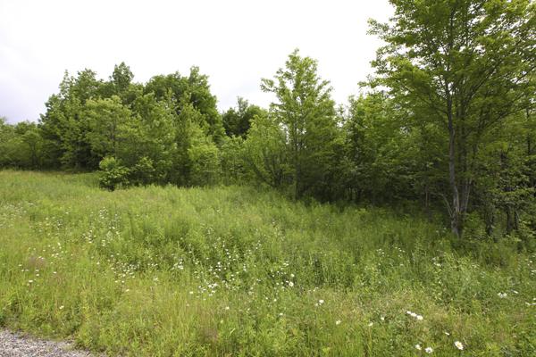 terrain-a-vendre-2363-b