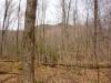 terrain-a-vendre-terre-34-acres