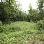 Land for sale in Eastern Townships (lot 1548-59)