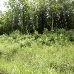 Land for sale in Eastern Townships (lot 2423)