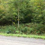 Terrain à vendre Mont Orford- lot 1548-33
